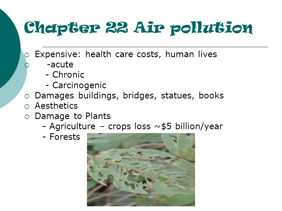 Chapter 22 Air pollution Expensive: health care costs, human lives