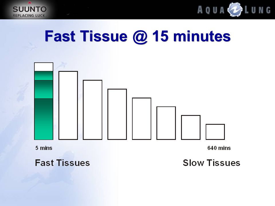 Fast Tissue @ 15 minutes