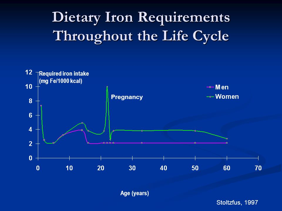 Dietary Iron Requirements Throughout the Life Cycle
