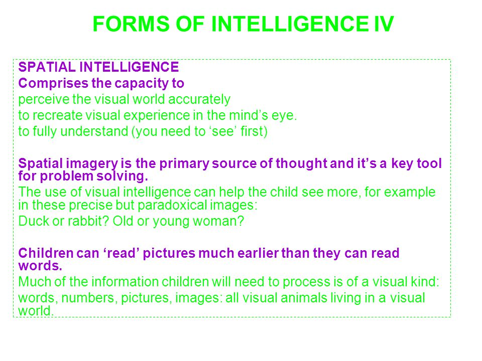 FORMS OF INTELLIGENCE IV
