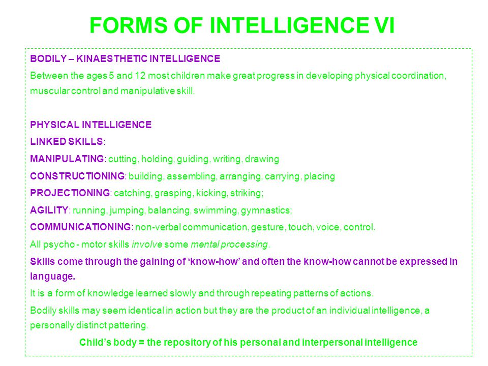 FORMS OF INTELLIGENCE VI
