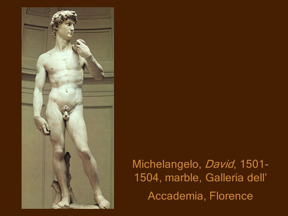 Michelangelo, David, 1501-1504, marble, Galleria dell' Accademia, Florence