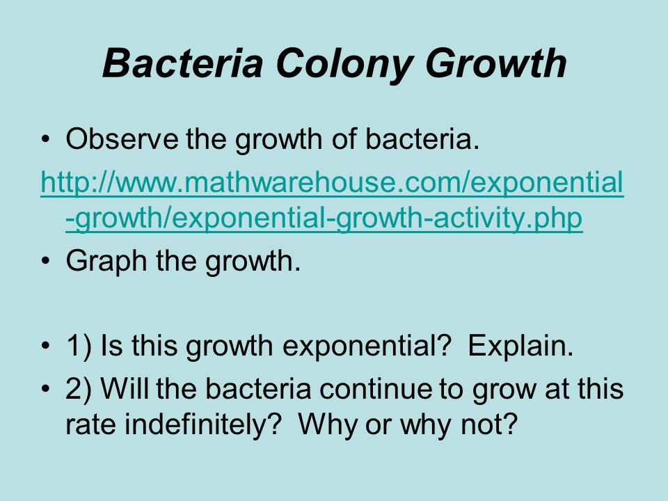 Bacteria Colony Growth