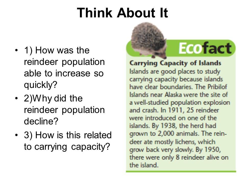 Think About It 1) How was the reindeer population able to increase so quickly 2)Why did the reindeer population decline
