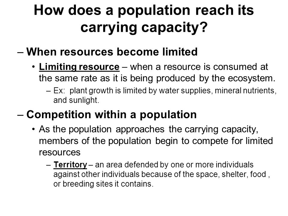 How does a population reach its carrying capacity