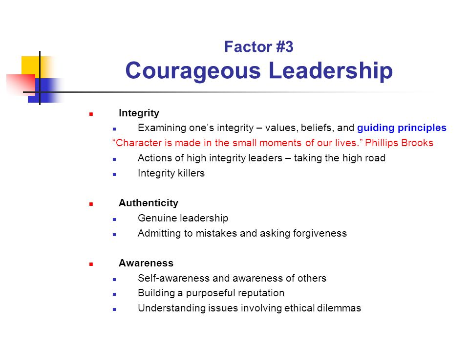 Factor #3 Courageous Leadership