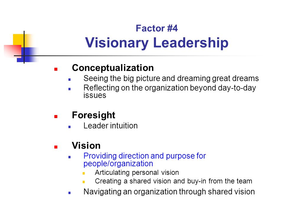 Factor #4 Visionary Leadership