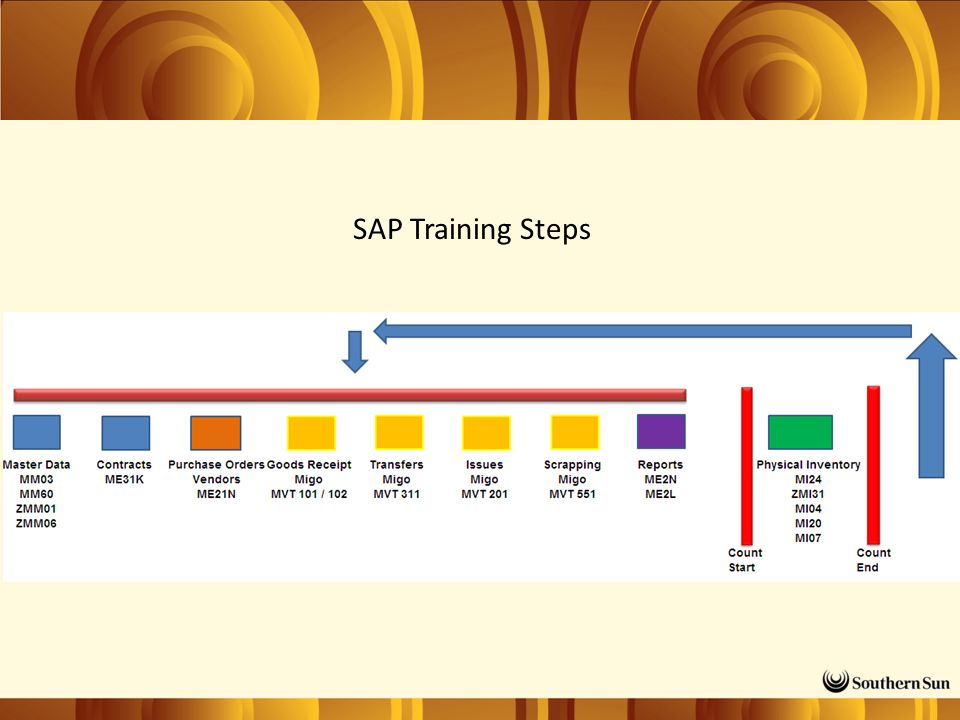 SAP Training Steps
