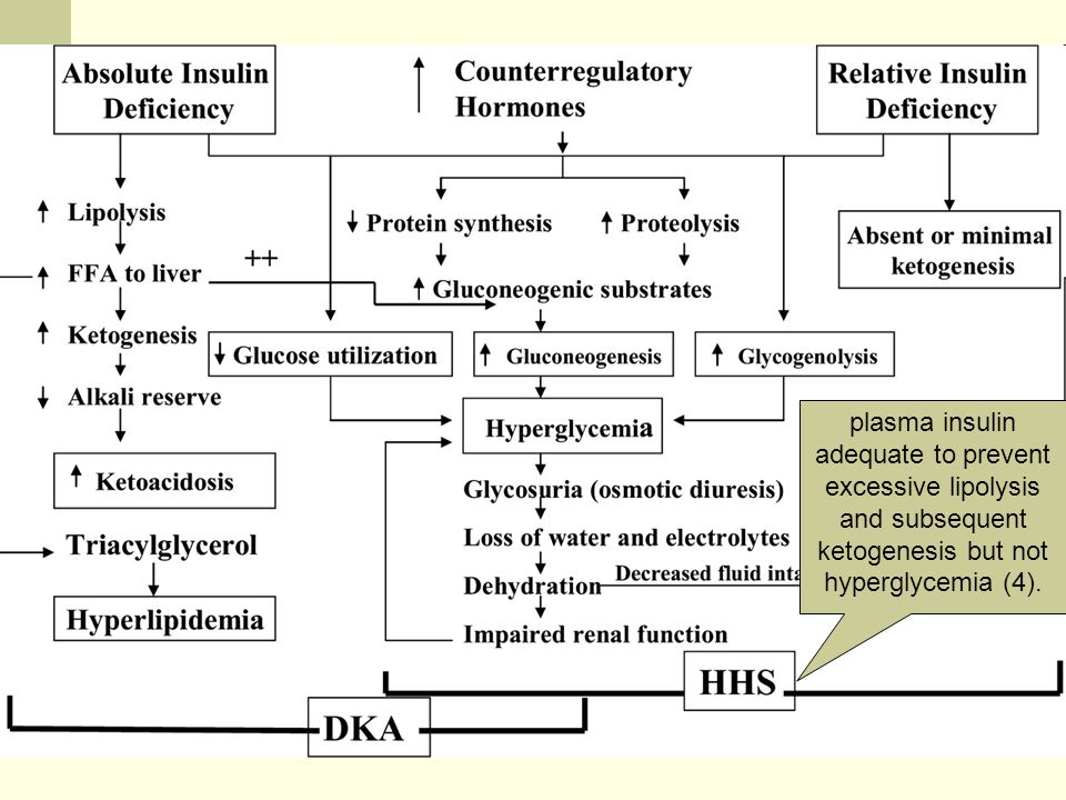 plasma insulin adequate to prevent excessive lipolysis and subsequent ketogenesis but not hyperglycemia (4).