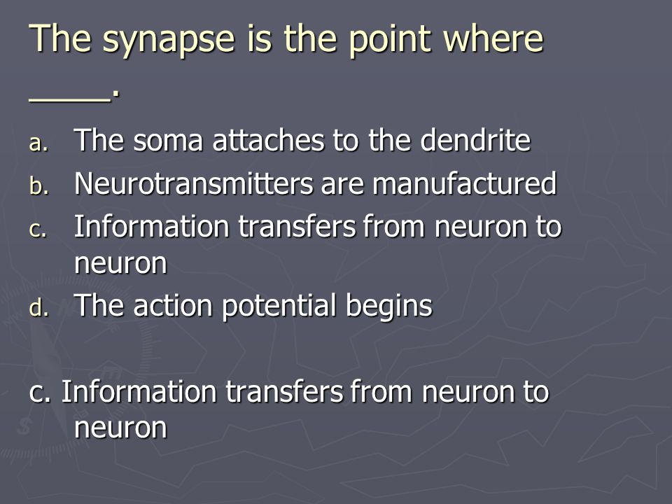The synapse is the point where ____.