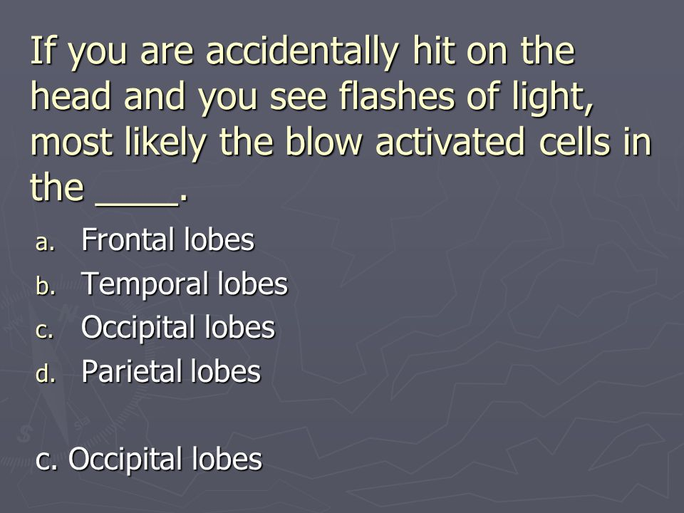 If you are accidentally hit on the head and you see flashes of light, most likely the blow activated cells in the ____.