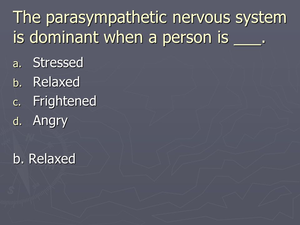 The parasympathetic nervous system is dominant when a person is ___.