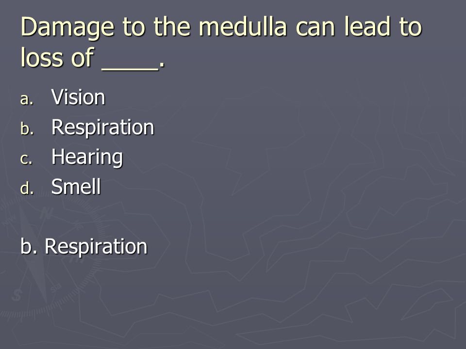 Damage to the medulla can lead to loss of ____.
