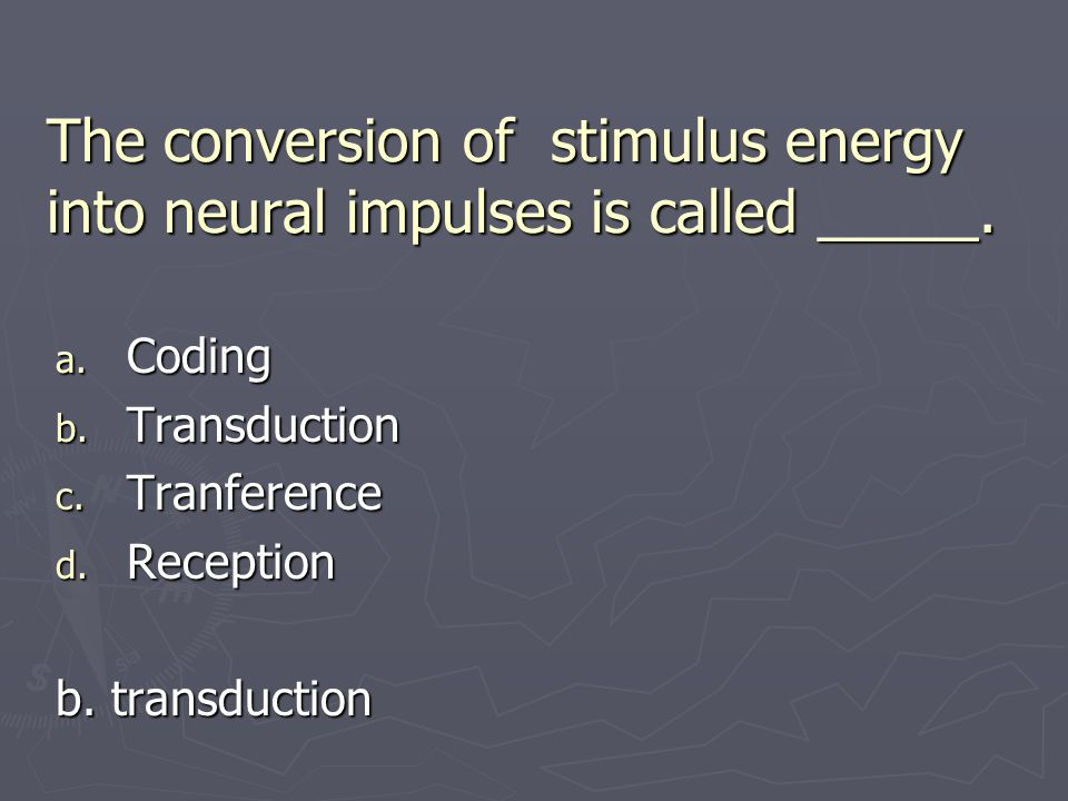 The conversion of stimulus energy into neural impulses is called _____.