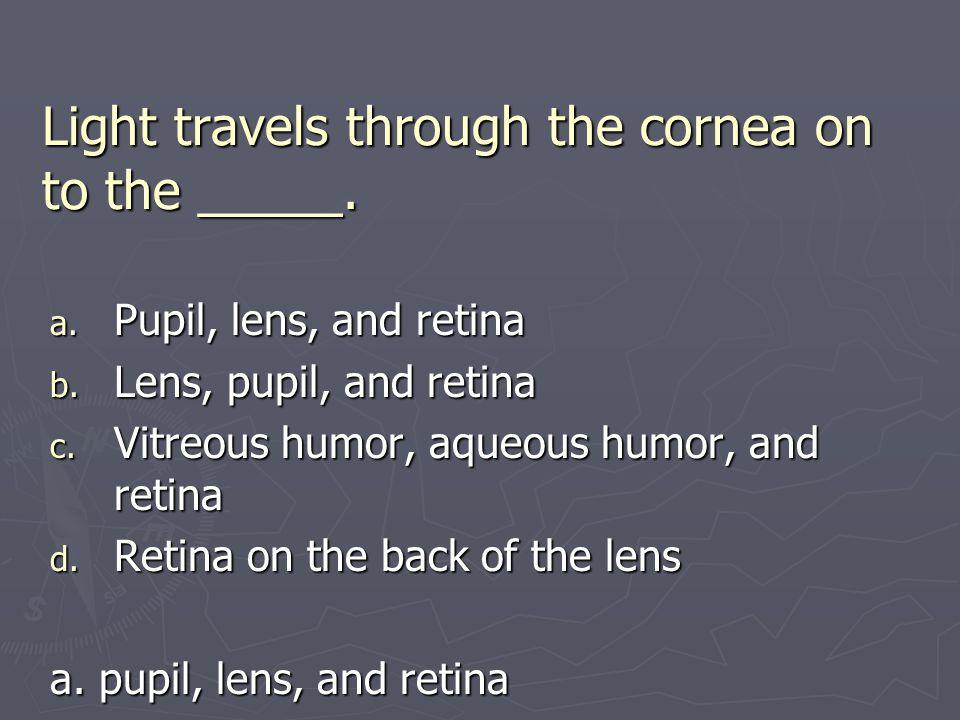 Light travels through the cornea on to the _____.