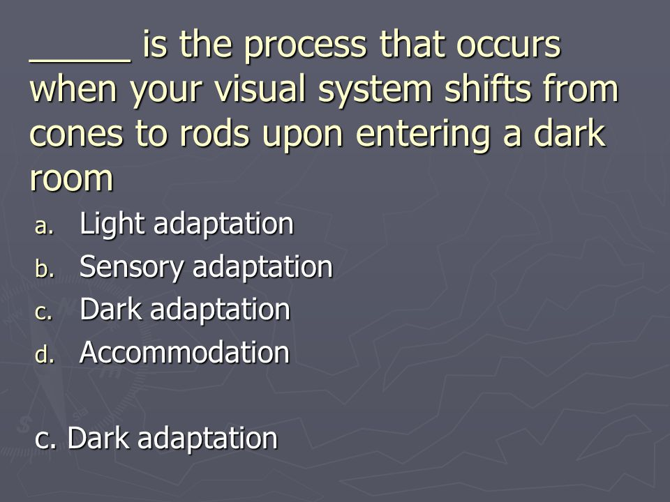 _____ is the process that occurs when your visual system shifts from cones to rods upon entering a dark room