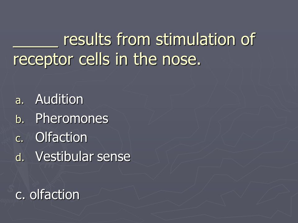 _____ results from stimulation of receptor cells in the nose.