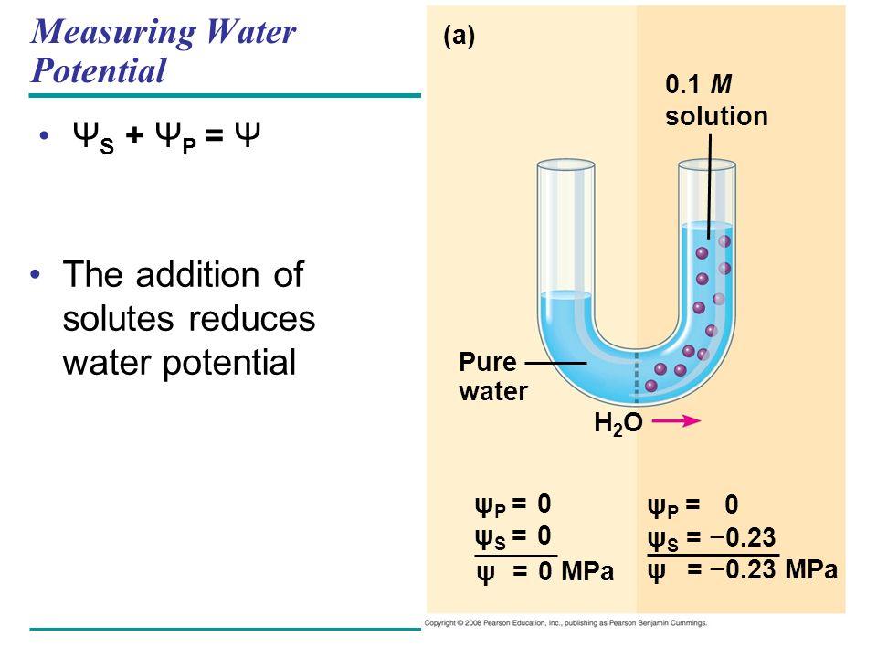 Measuring Water Potential