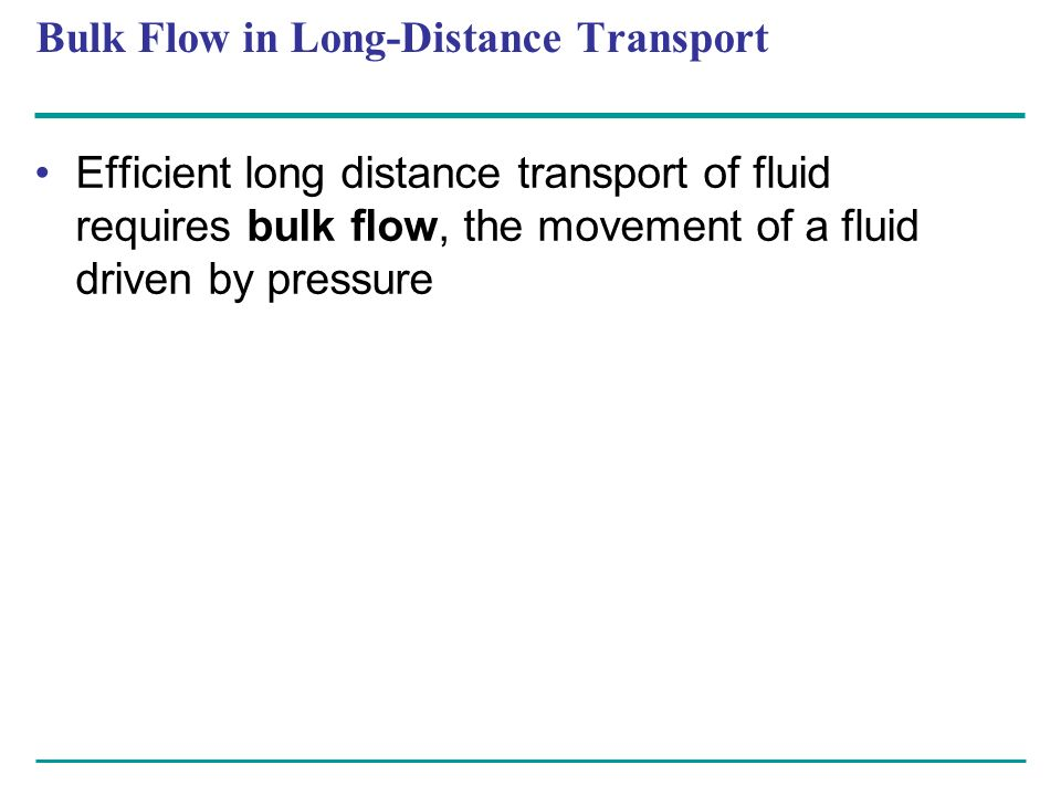 Bulk Flow in Long-Distance Transport