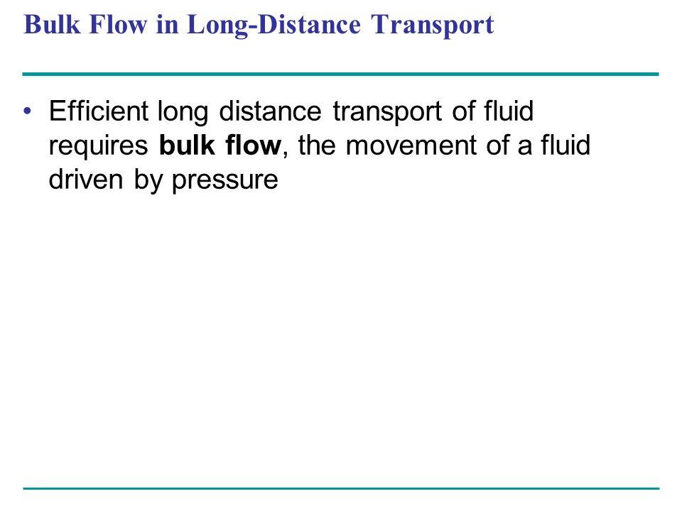 Bulk Flow in Long-Distance Transport