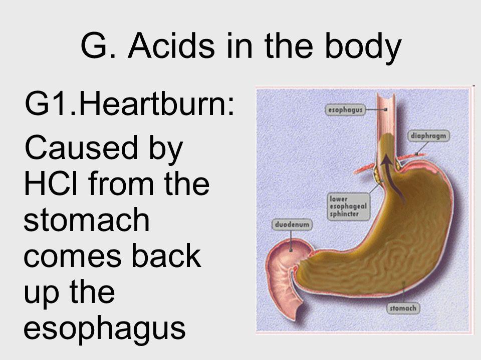 G. Acids in the body G1.Heartburn: