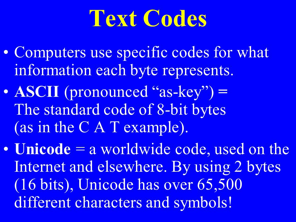 Text Codes Computers use specific codes for what information each byte represents.