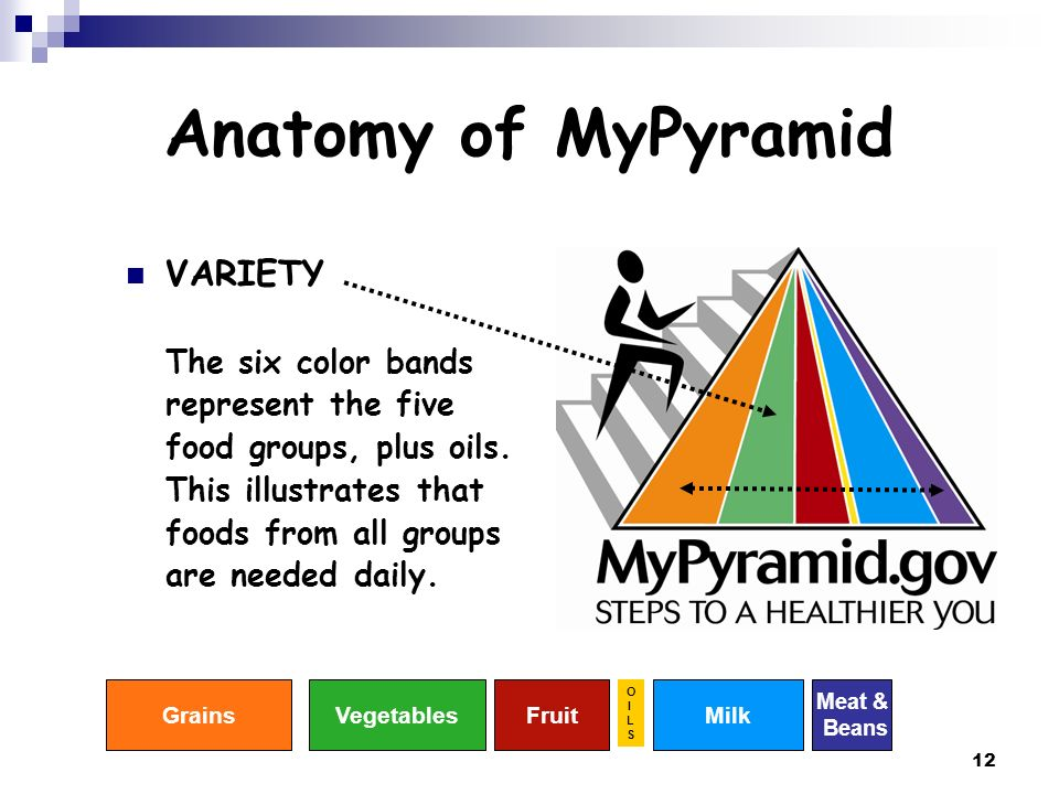 Anatomy of MyPyramid VARIETY