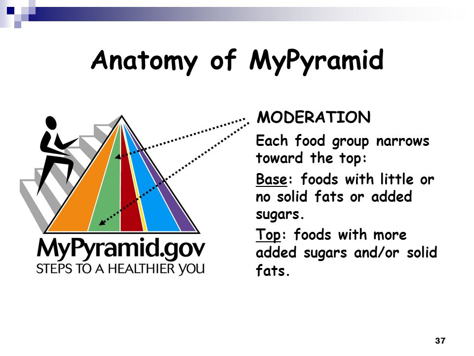 Anatomy of MyPyramid MODERATION