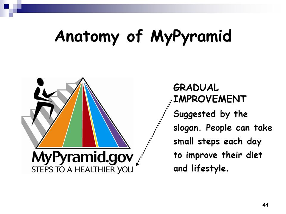 Anatomy of MyPyramid GRADUAL IMPROVEMENT
