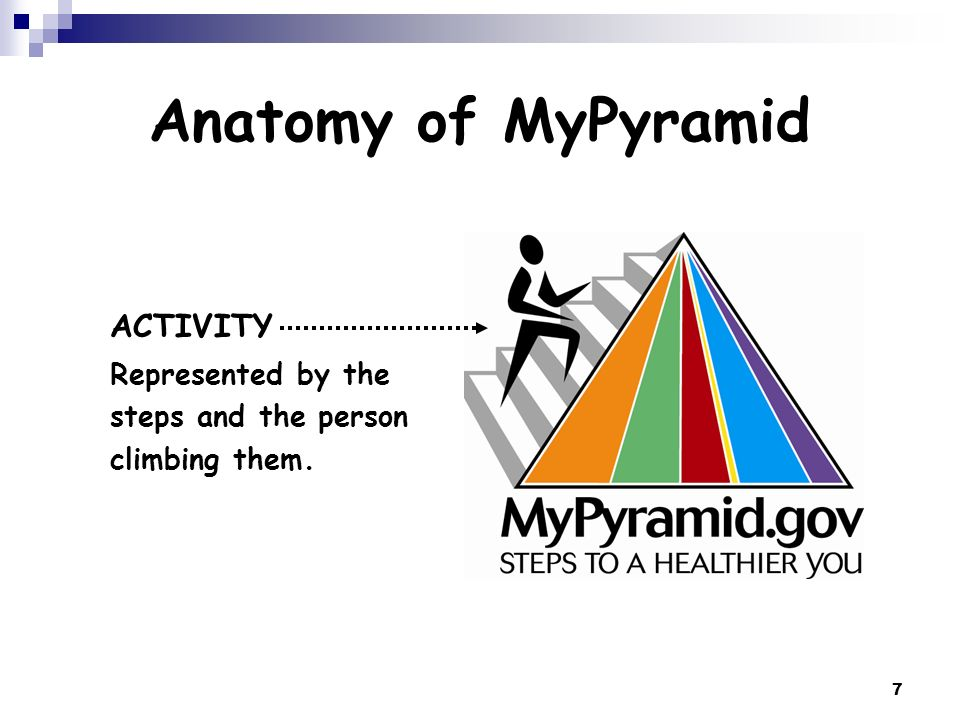 Anatomy of MyPyramid ACTIVITY