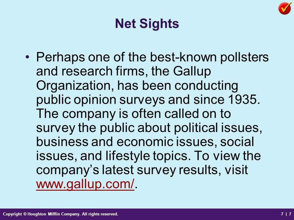 Net Sights