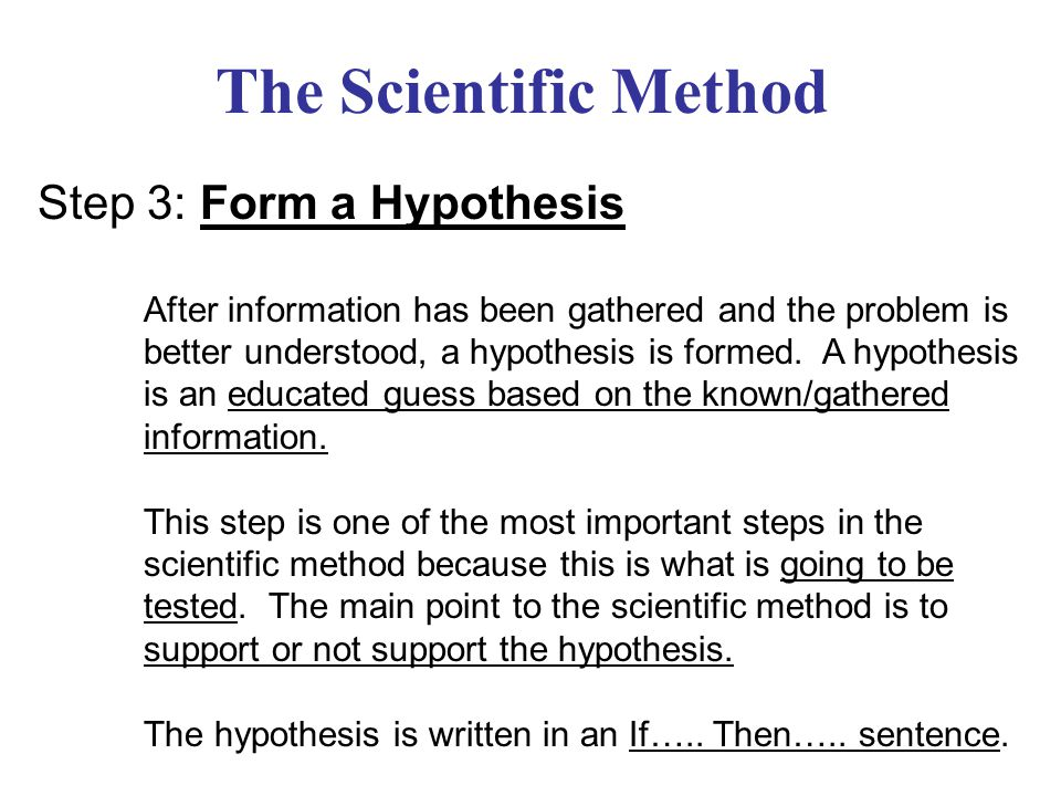 The Scientific Method Step 3: Form a Hypothesis
