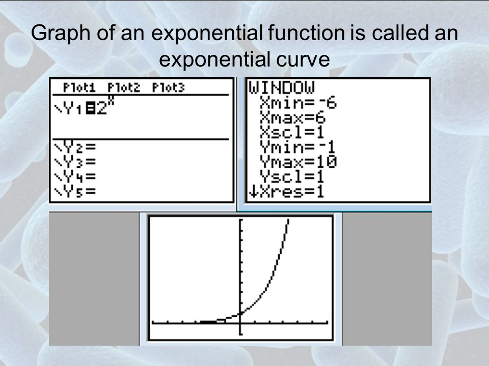 Graph of an exponential function is called an exponential curve