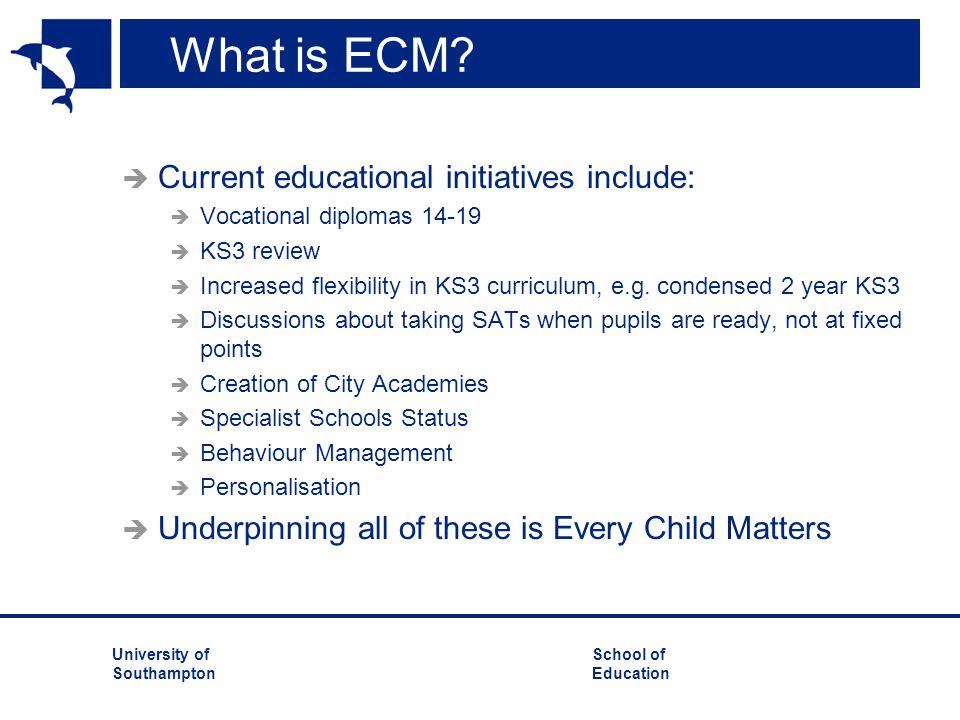 What is ECM Current educational initiatives include: