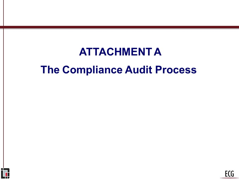 The Compliance Audit Process