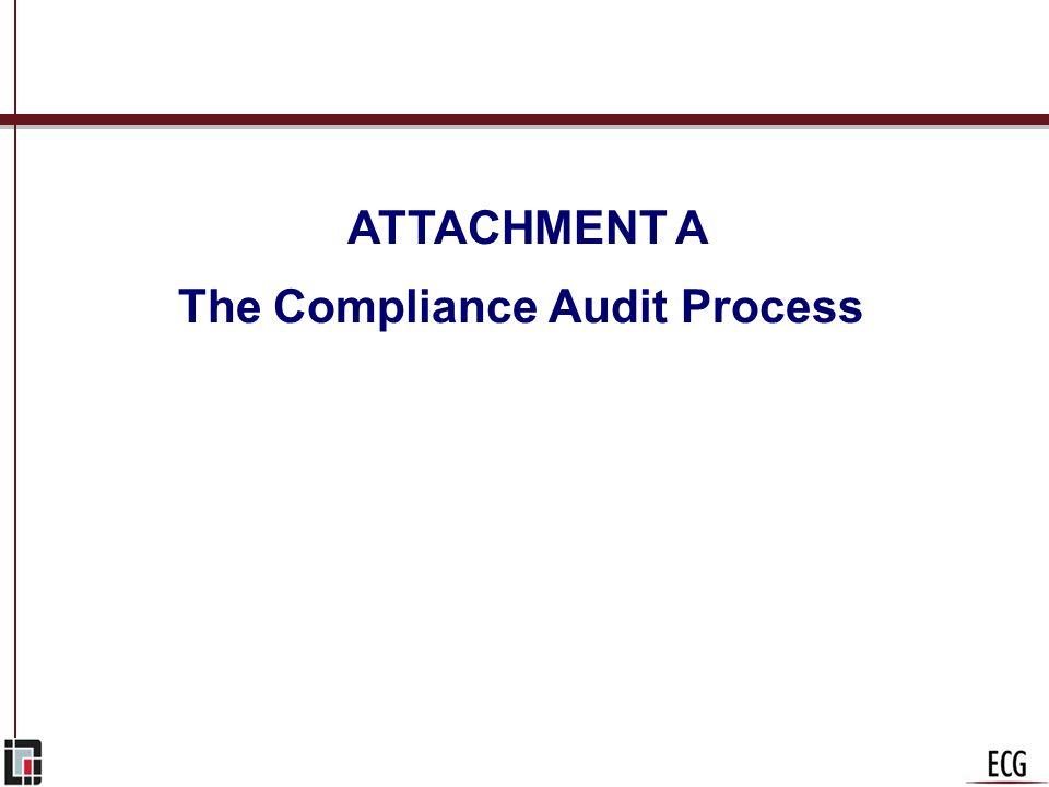 The Compliance Audit Process