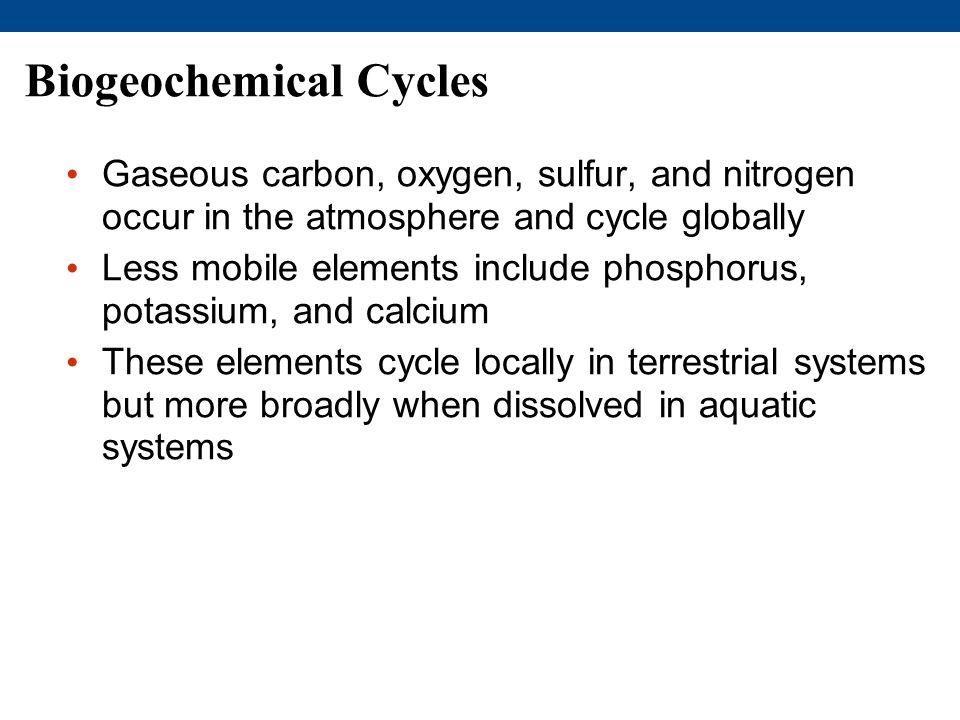 Biogeochemical Cycles