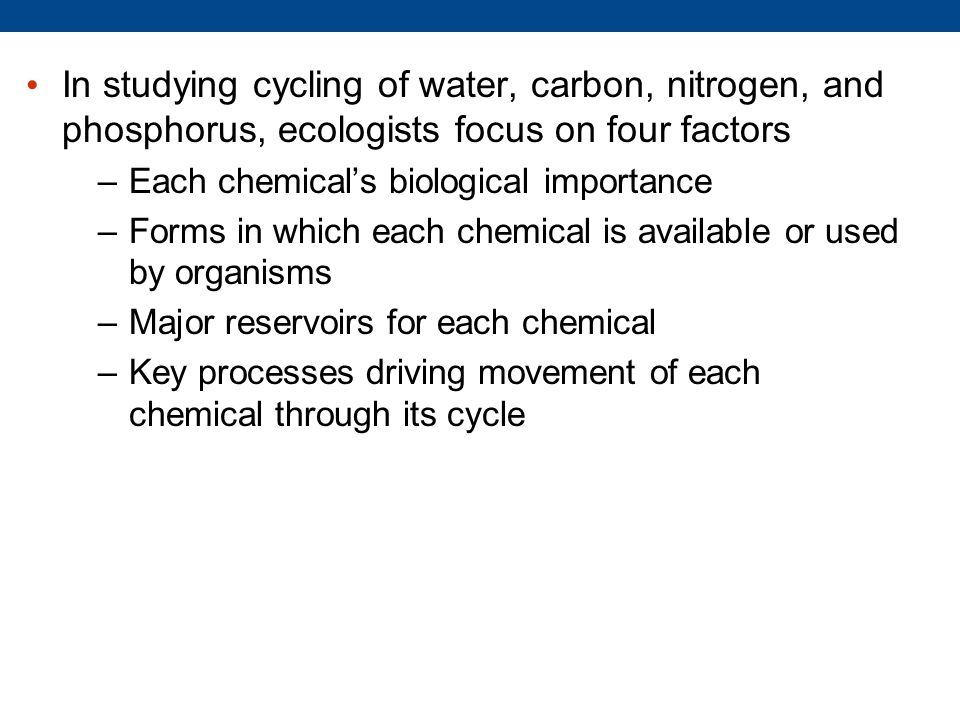 In studying cycling of water, carbon, nitrogen, and phosphorus, ecologists focus on four factors