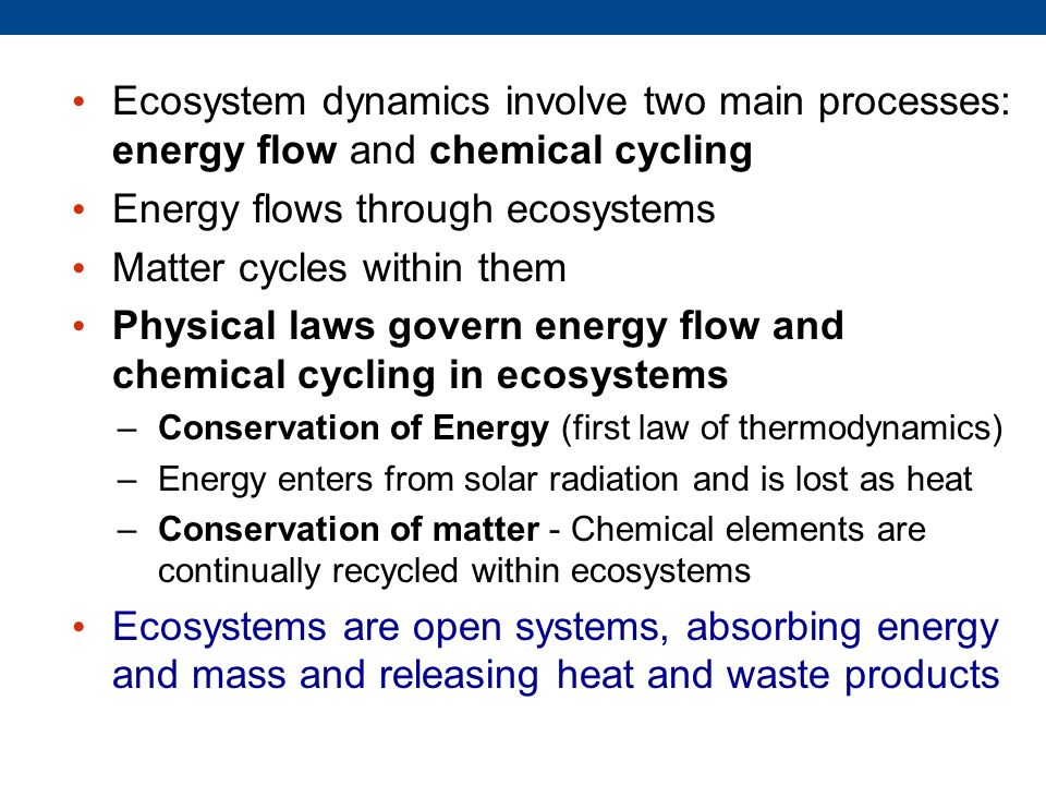 Energy flows through ecosystems Matter cycles within them