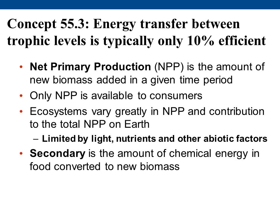 Concept 55.3: Energy transfer between trophic levels is typically only 10% efficient
