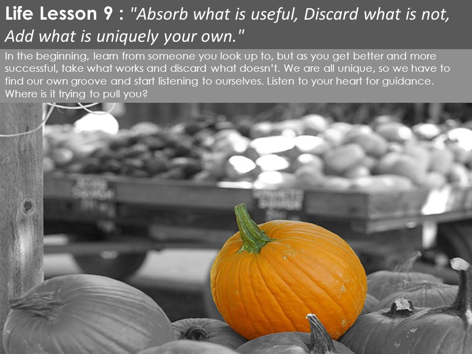 Life Lesson 9 : Absorb what is useful, Discard what is not, Add what is uniquely your own.