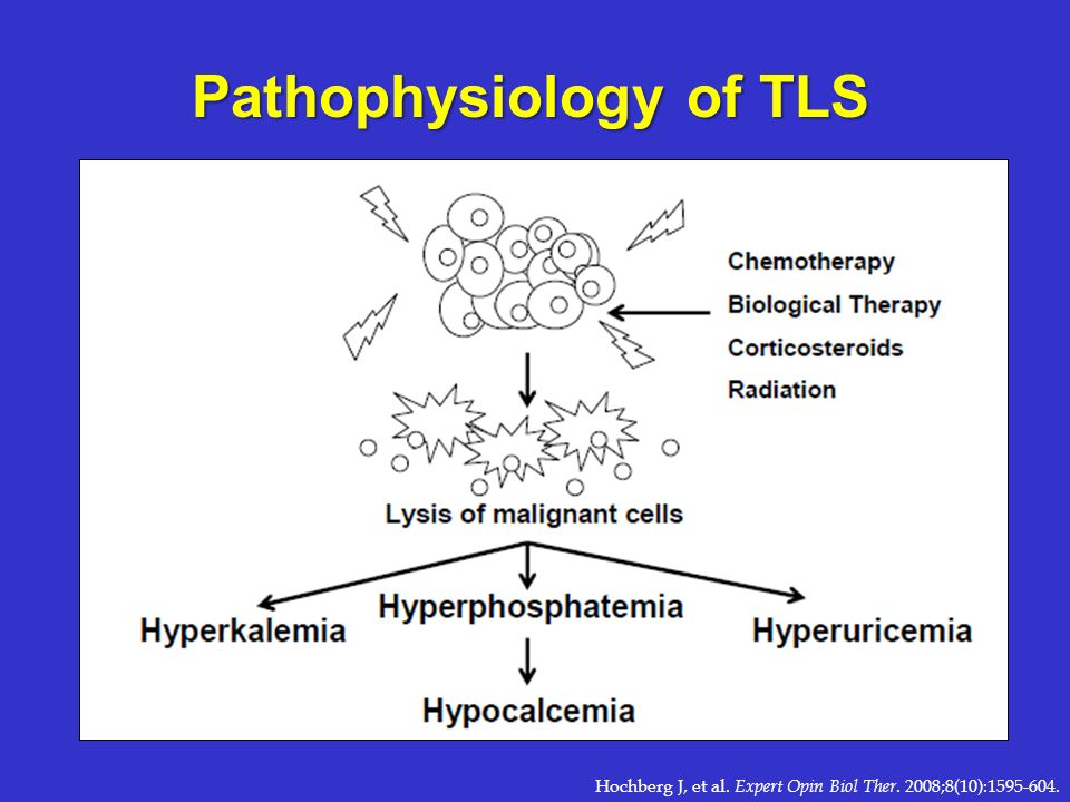 Pathophysiology of TLS