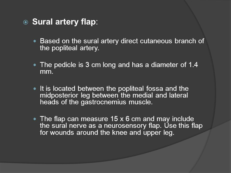Sural artery flap: Based on the sural artery direct cutaneous branch of the popliteal artery. The pedicle is 3 cm long and has a diameter of 1.4 mm.