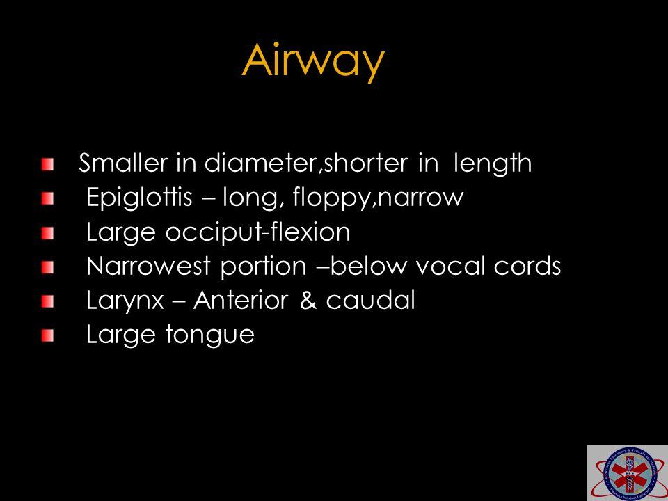 Airway Smaller in diameter,shorter in length