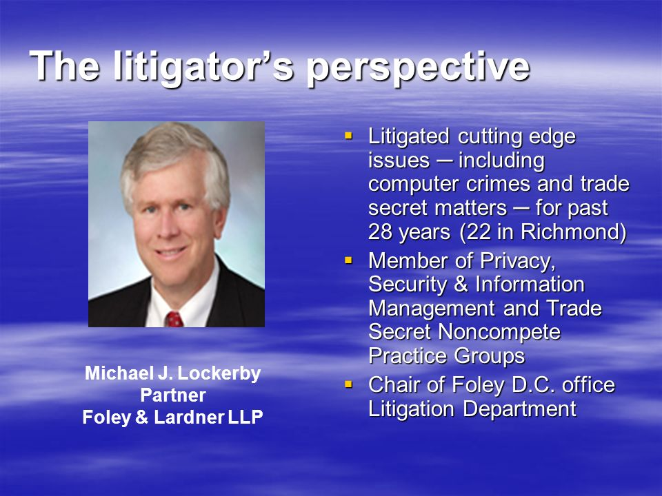The litigator's perspective