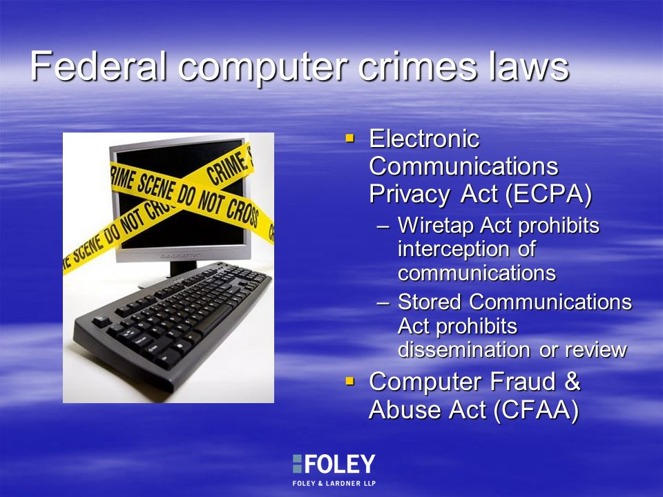 Federal computer crimes laws