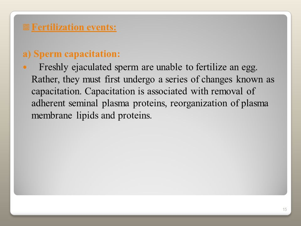 Fertilization events: