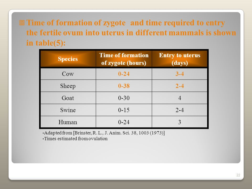 Time of formation of zygote (hours)