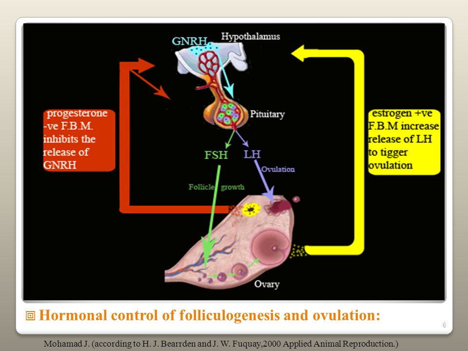 Hormonal control of folliculogenesis and ovulation: