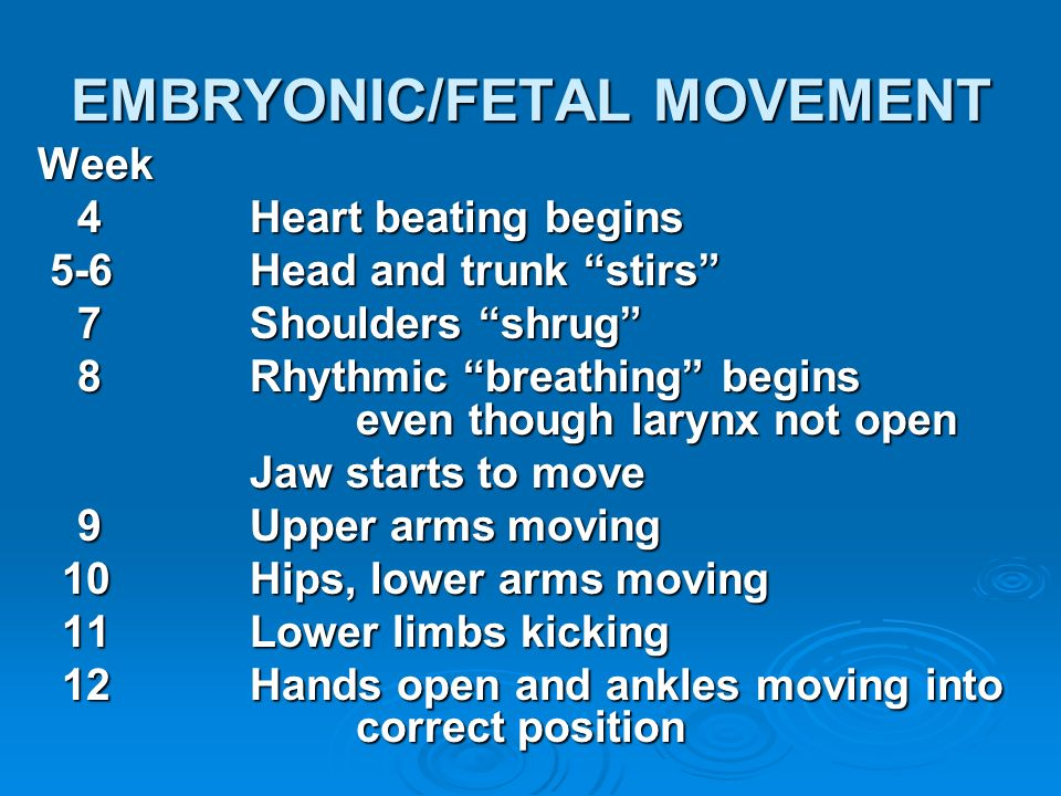 EMBRYONIC/FETAL MOVEMENT